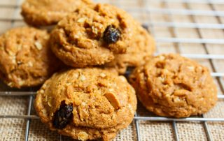 Diabetic Oatmeal Raisin Cookies Archives Chiropractor Fort Myers