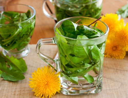 Dandelions & Health!