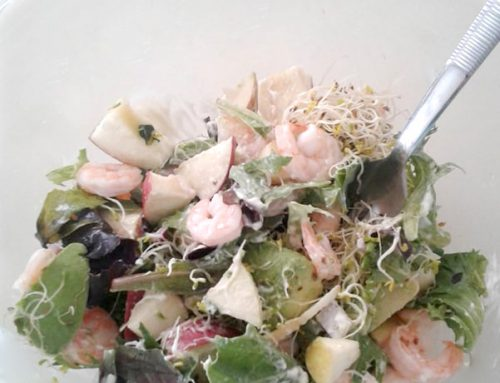 Super Easy Apple & Shrimp Salad (or Tuna) – A Light Lunch Recipe