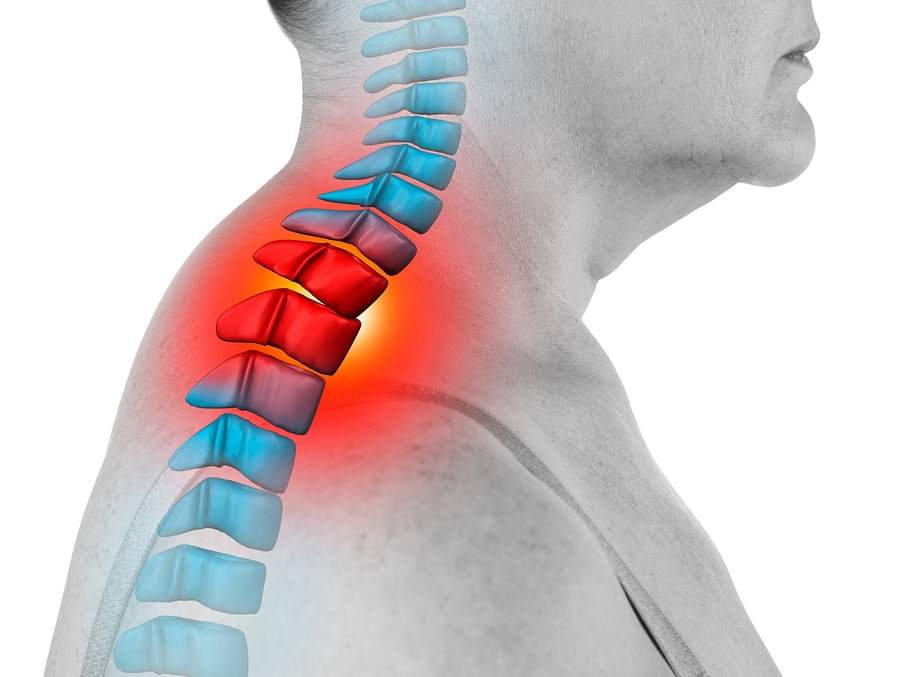 chiropractor open fort myers