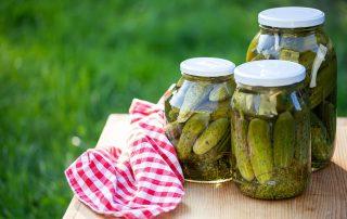 craving pickles adrenal fatigue dr kaster