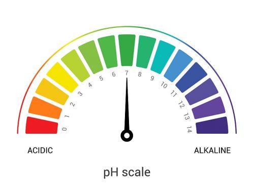 Natural Age Progression or Acid Overload?