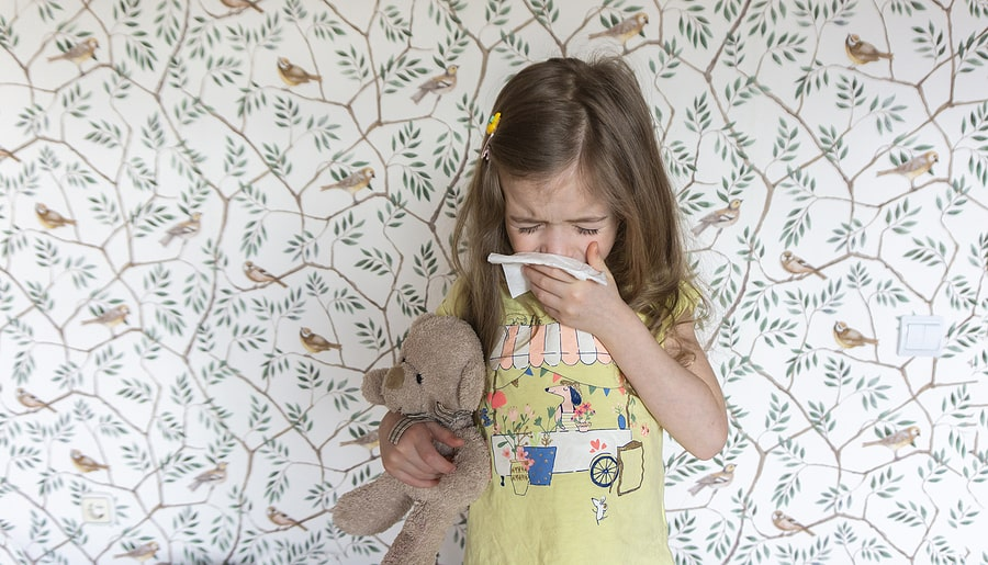common cold how to treat covid corona virus boost your immune system dr kaster